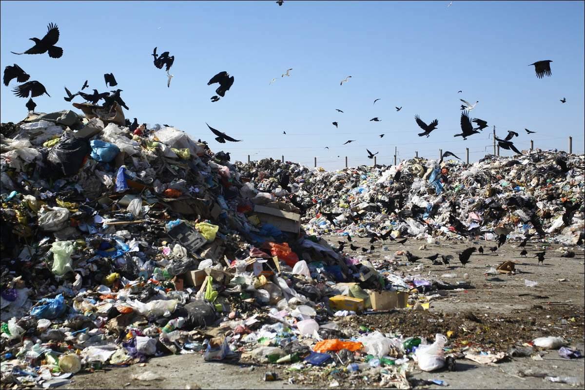 Картинка свалки мусора